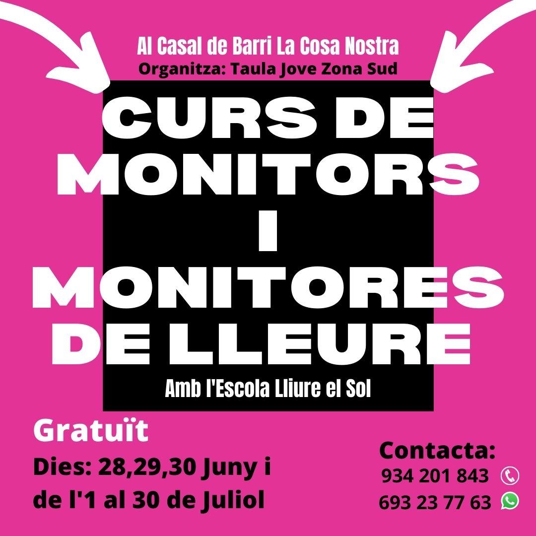 Monitors_Taula21